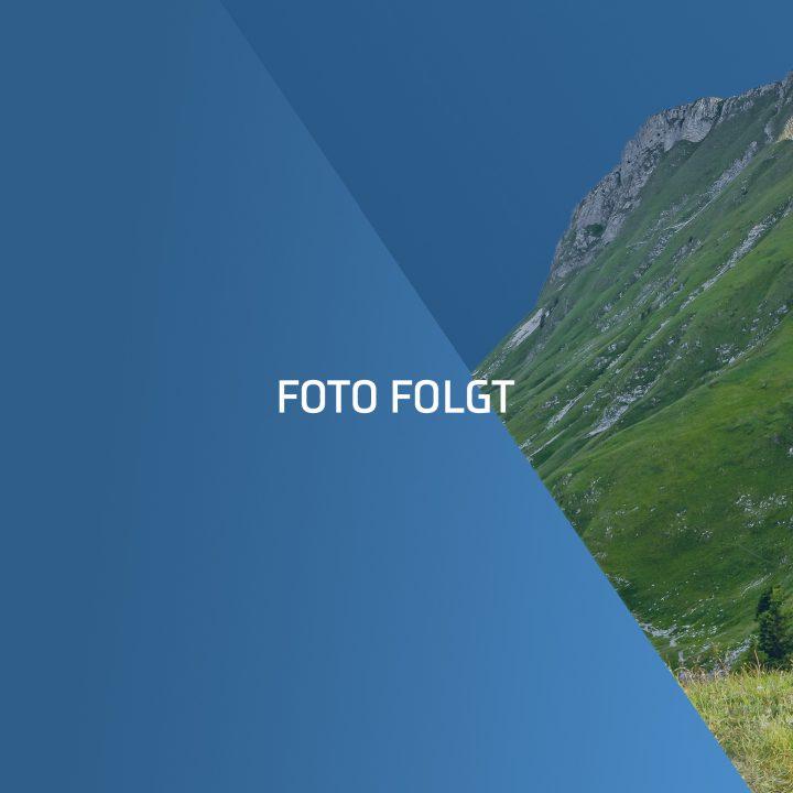003_Wigo_Kategoriebilder_Platzhalter_20210701